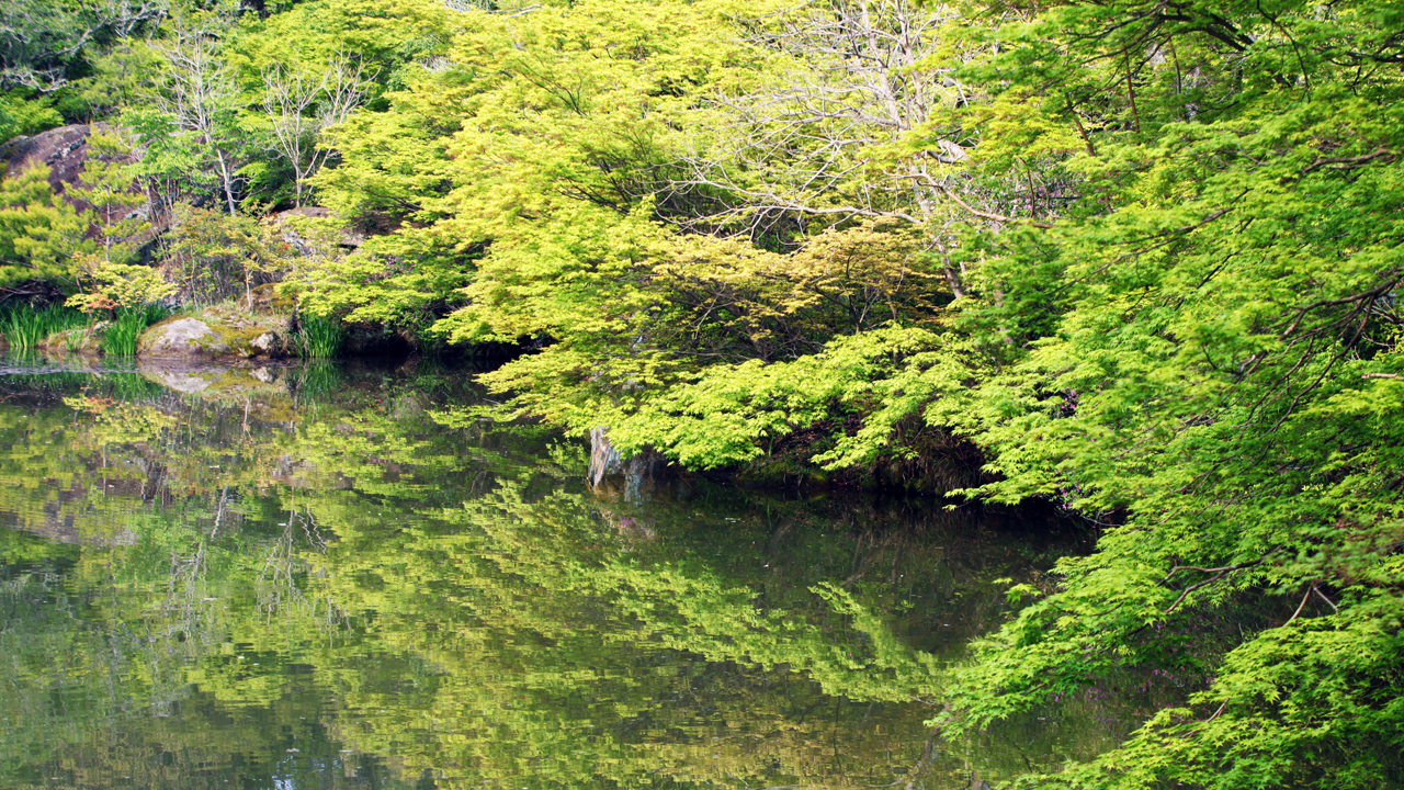 New greenery in Mifuneyama Rakuen